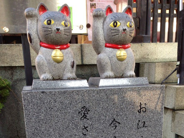 今戸神社 なで猫