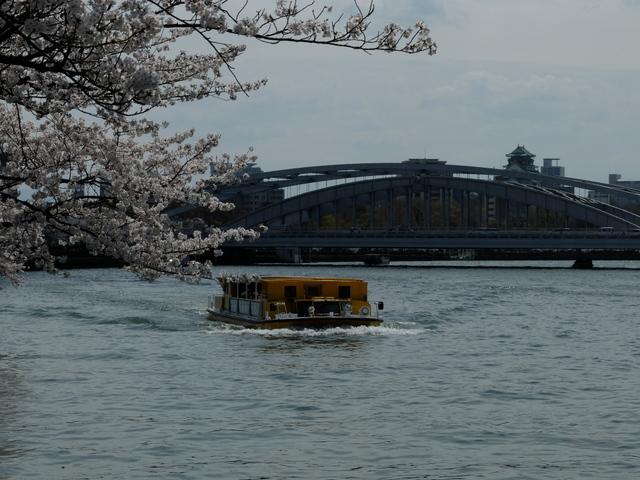 桜ノ宮公園のお花見