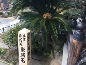 萩の寺 東光院