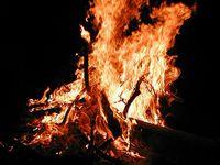焚き火料理を楽しむ遊び