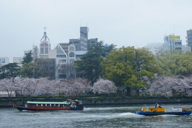 大川の屋形船でからのお花見