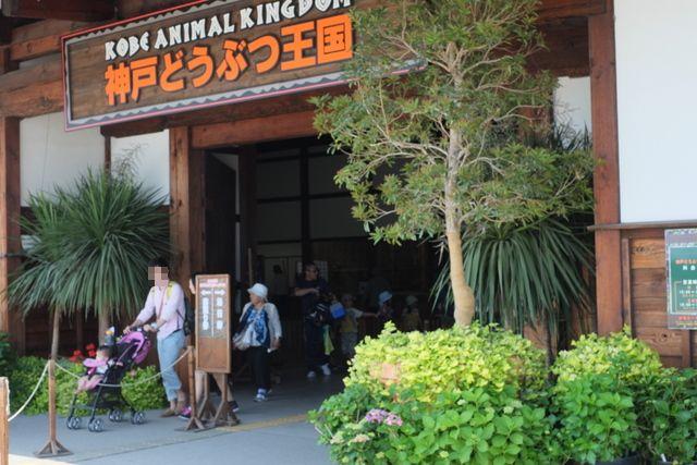 神戸 動物王国