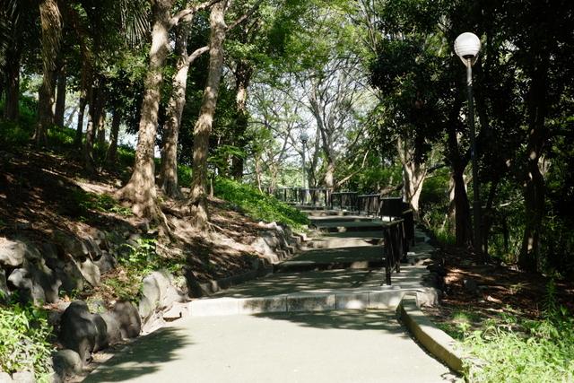 大正区千島公園のエイサーまつり