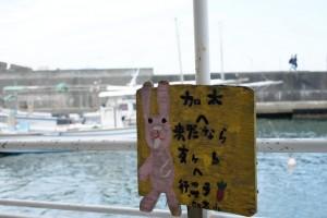 加太 友ヶ島