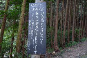 夢農場 城山オレンヂ園のレジャー情報