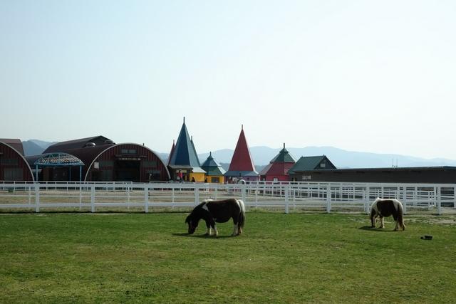 ワールド牧場